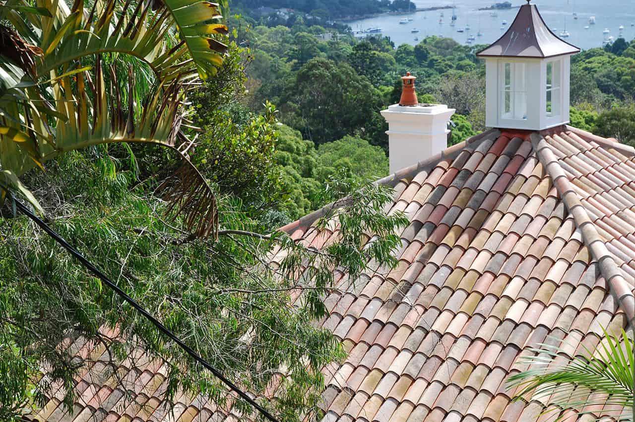גג רעפים לבית כפרי על רקע עצי חורש