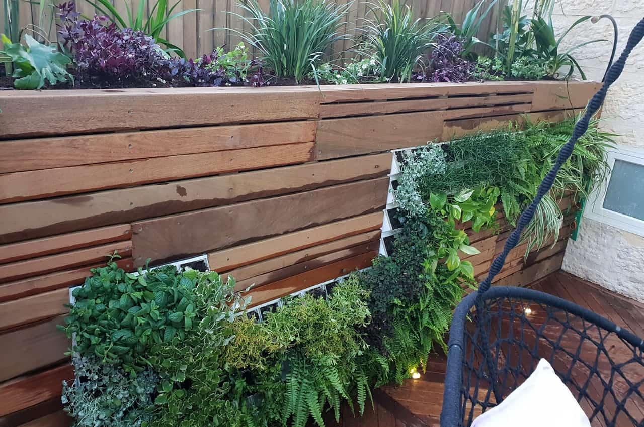 חיפוי גדר בגינה - עץ איפאה