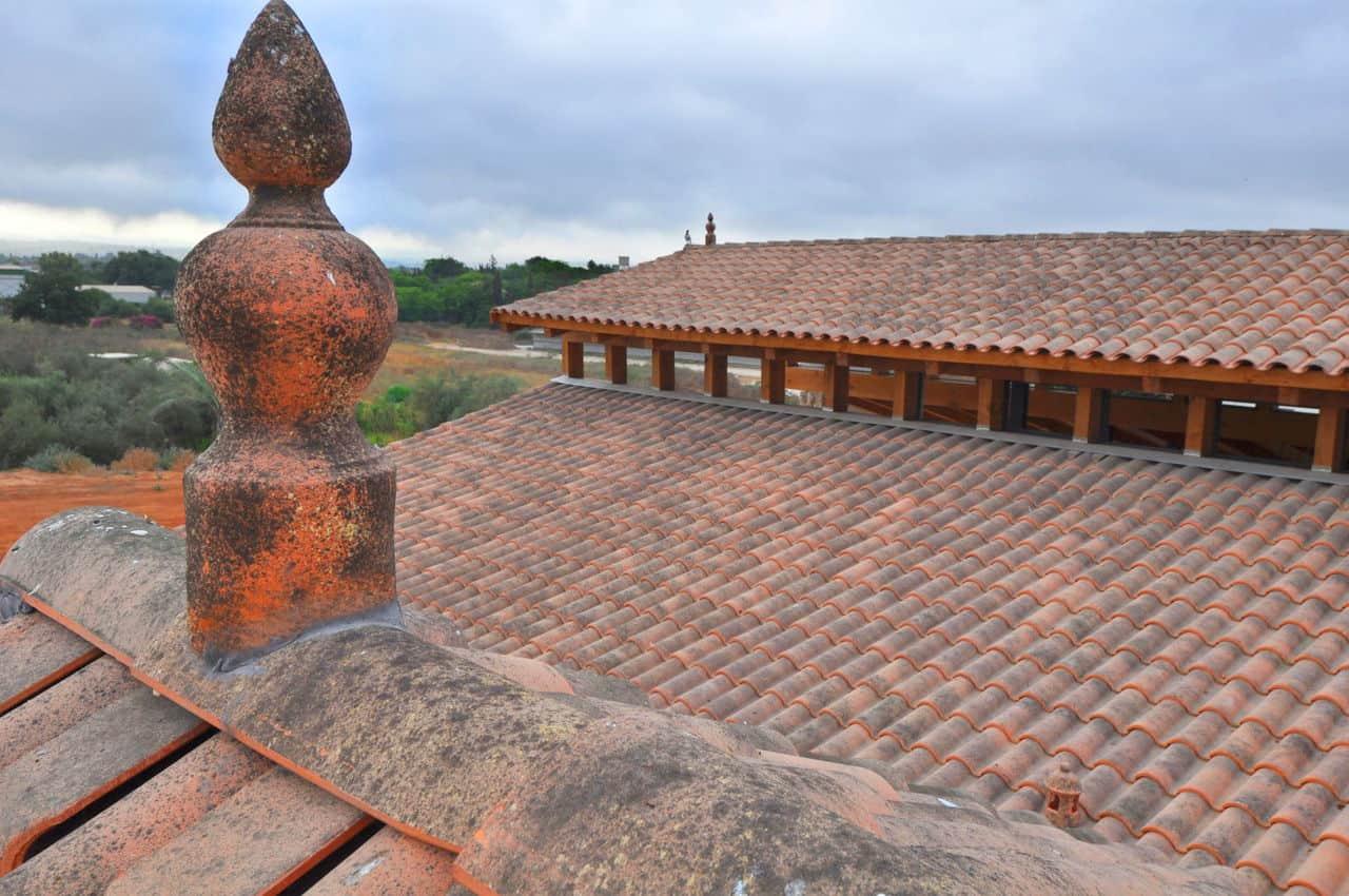 גג רעפים עם אלמנטים דקורטיבים מיוחדים
